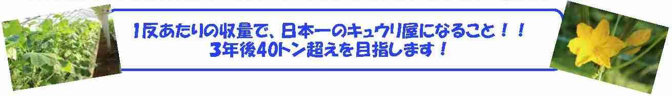 20181027_tudoi_photo5